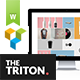 Triton - Multipage Portfolio WordPress Theme - ThemeForest Item for Sale