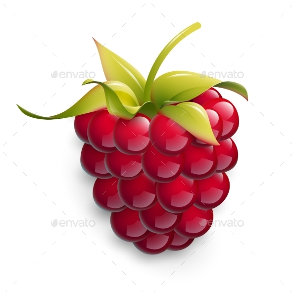 Vector Illustration Of Ripe Raspberry. - Food Objects