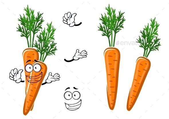 Cartoon Ripe Orange Carrot Vegetable - Food Objects