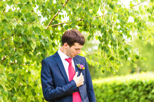 groom in the wedding suit with boutonniere - Stock Photo - Images