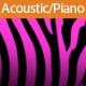 Acoustic Conversation - AudioJungle Item for Sale