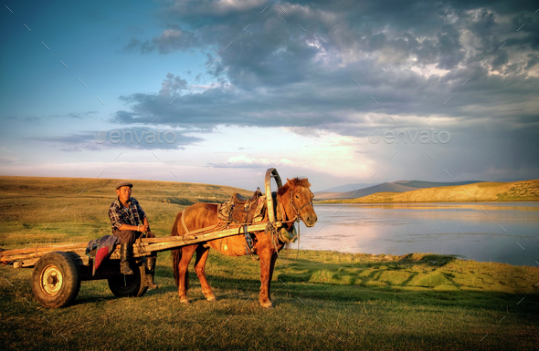 Horse Man Sitting Horse Cart Rural Remote Suburb Concept - Stock Photo - Images