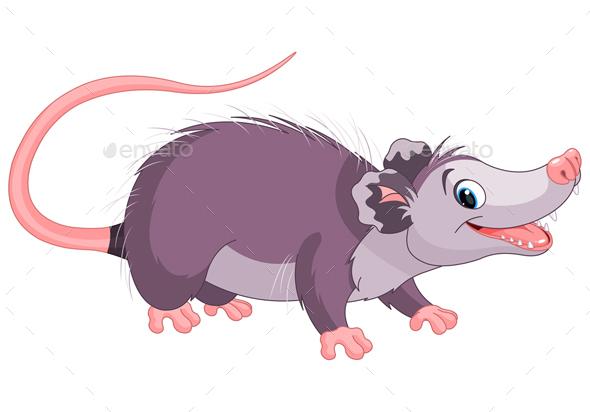 Opossum  - Animals Characters
