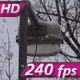Snowfall in the City Park - VideoHive Item for Sale