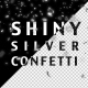 Shiny Silver Confetti - VideoHive Item for Sale