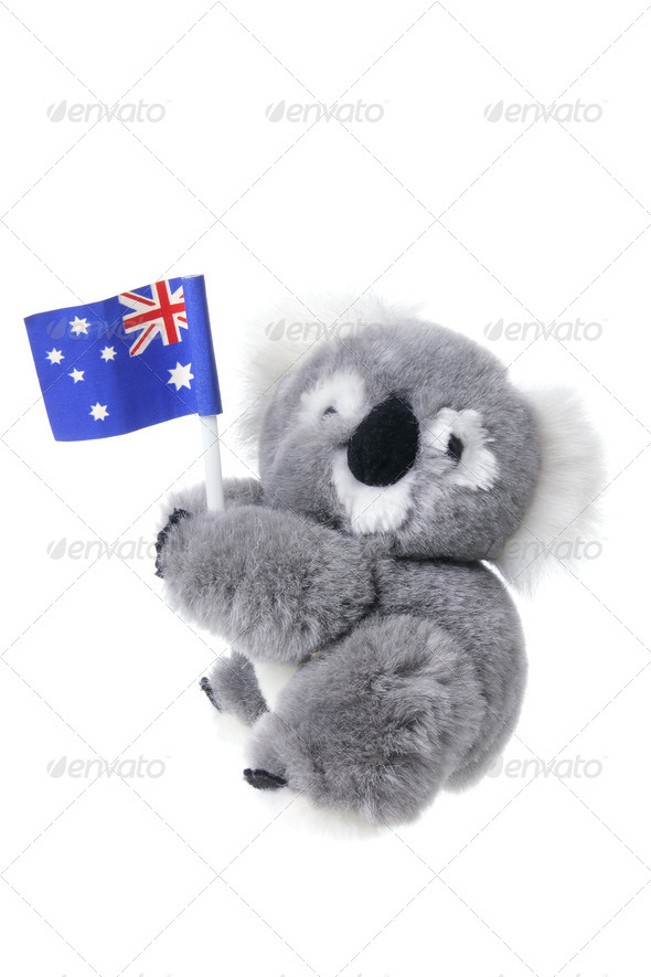 Soft Toy Koala - Stock Photo - Images