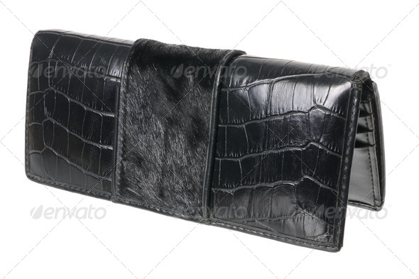 Lady's Wallet - Stock Photo - Images