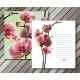 Orchid Cards for Your Design Background - GraphicRiver Item for Sale