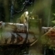 Mechanical Arm Loads Tree Trunks In Forest - VideoHive Item for Sale