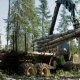 Mechanical Arm Loads Tree Trunks - VideoHive Item for Sale