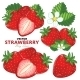 Strawberry Set, Vector. - GraphicRiver Item for Sale