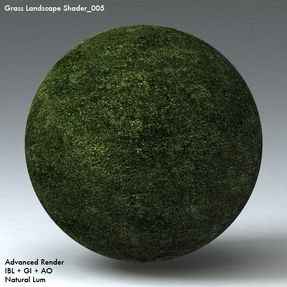 Grass Landscape Shader_005 - 3DOcean Item for Sale