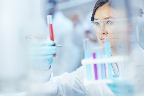 Laboratory assistant - Stock Photo - Images