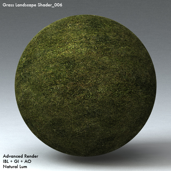 Grass Landscape Shader_006 - 3DOcean Item for Sale