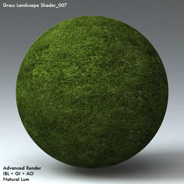 Grass Landscape Shader_007 - 3DOcean Item for Sale