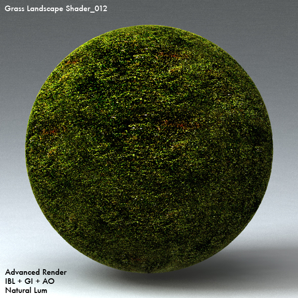 Grass Landscape Shader_012 - 3DOcean Item for Sale