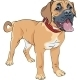 Sketch Dog Boerboel Breed - GraphicRiver Item for Sale