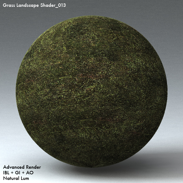 Grass Landscape Shader_013 - 3DOcean Item for Sale
