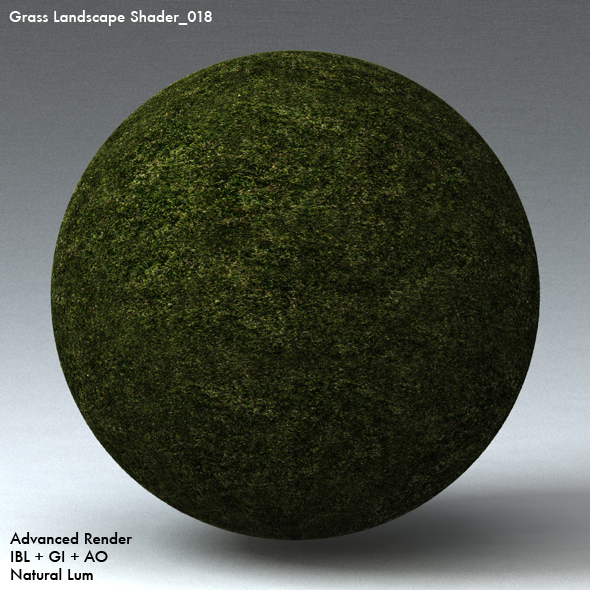 Grass Landscape Shader_018 - 3DOcean Item for Sale