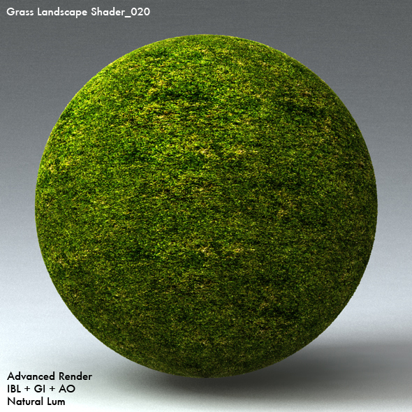 Grass Landscape Shader_020 - 3DOcean Item for Sale