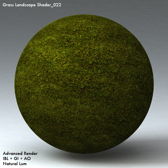 Grass Landscape Shader_022 - 3DOcean Item for Sale