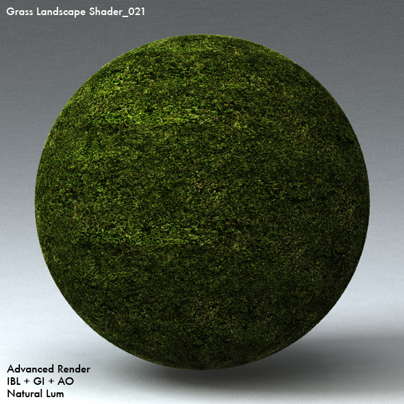 Grass Landscape Shader_021 - 3DOcean Item for Sale
