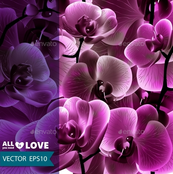 Orchid Flower Template - Flowers & Plants Nature