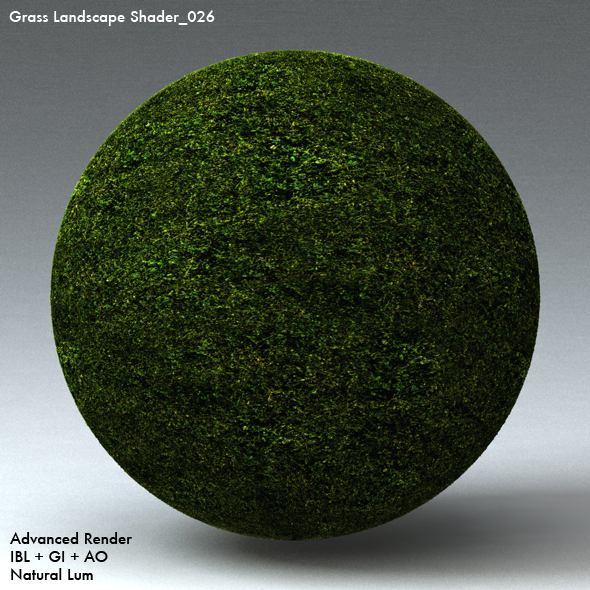 Grass Landscape Shader_026 - 3DOcean Item for Sale