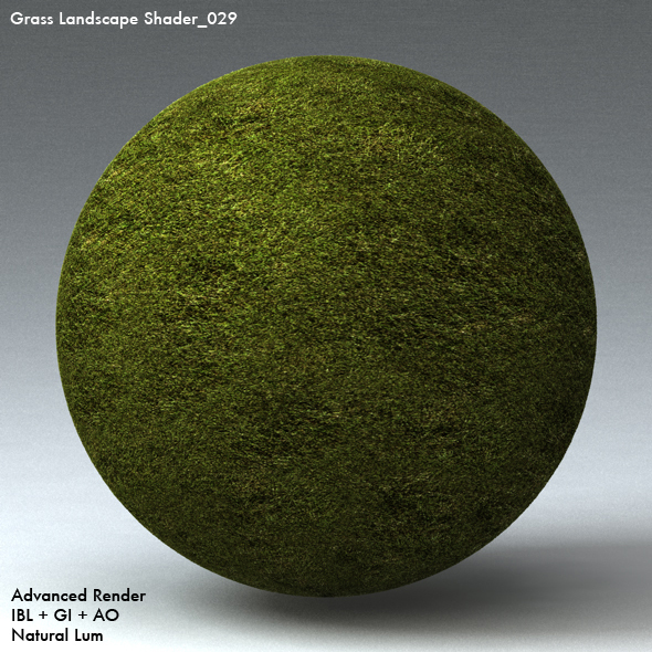 Grass Landscape Shader_029 - 3DOcean Item for Sale