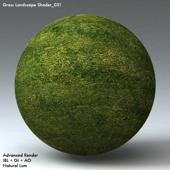Grass Landscape Shader_031 - 3DOcean Item for Sale