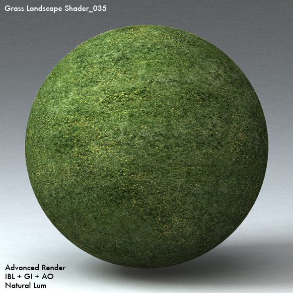 Grass Landscape Shader_035 - 3DOcean Item for Sale