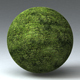 Grass Landscape Shader_037 - 3DOcean Item for Sale