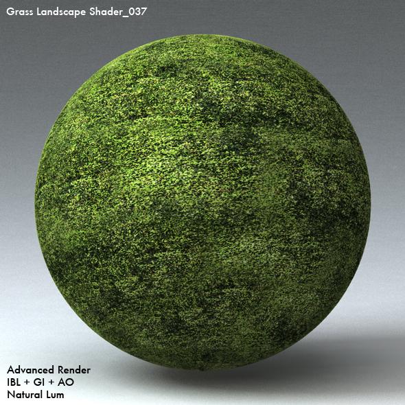 Grass Landscape Shader_037 - 3DOcean Item for Sale