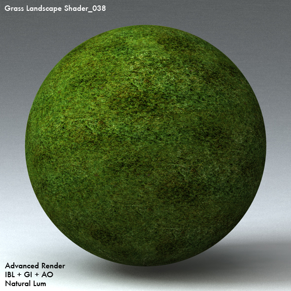 Grass Landscape Shader_038 - 3DOcean Item for Sale