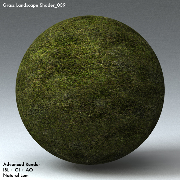 Grass Landscape Shader_039 - 3DOcean Item for Sale