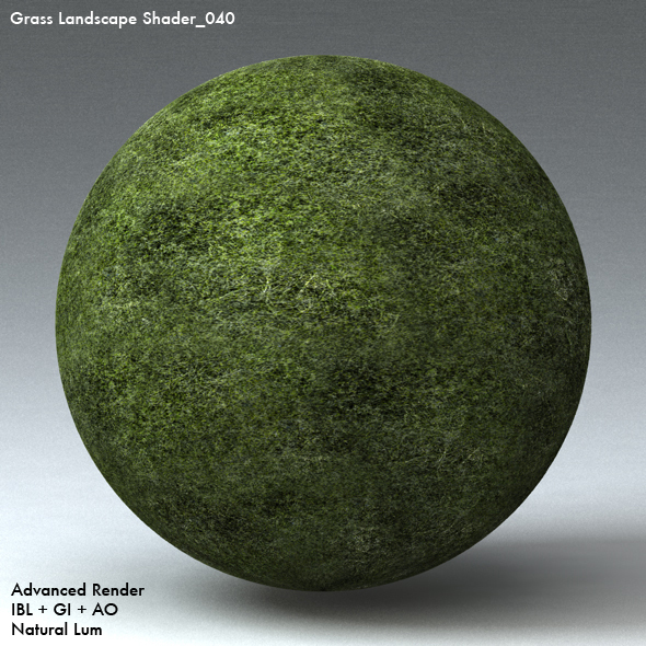 Grass Landscape Shader_040 - 3DOcean Item for Sale