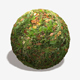 Autumn Weedy Grass Seamless Texture