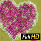 Flower Meadow in the Form of Heart - VideoHive Item for Sale