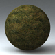 Grass Landscape Shader_044 - 3DOcean Item for Sale