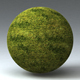 Grass Landscape Shader_050 - 3DOcean Item for Sale