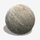 Damp Beach Seamless Texture