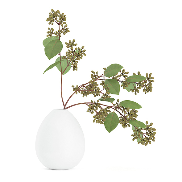 Sugar Gum Twigs in White Vase - 3DOcean Item for Sale