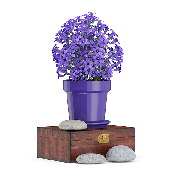 Purple Flowes on Wooden Box - 3DOcean Item for Sale
