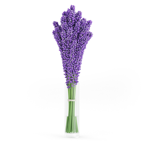 Violet Lupine in Glass Vase - 3DOcean Item for Sale