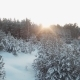 The Sun In The Winter Forest - VideoHive Item for Sale