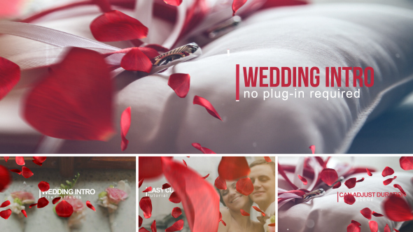 Videohive Wedding Intro 14584906 - Free download