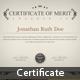 Multipurpose Certificate [Vol.03] - GraphicRiver Item for Sale