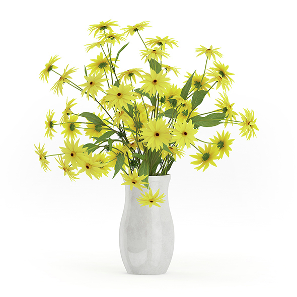 Coneflowers in Ceramic Vase - 3DOcean Item for Sale