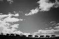 Mountain pasture - PhotoDune Item for Sale