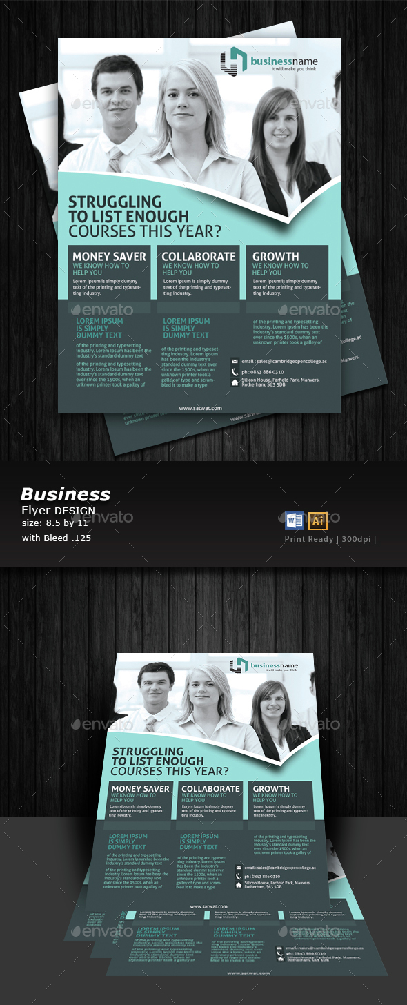 Business A4 Flyer Design  - Corporate Flyers